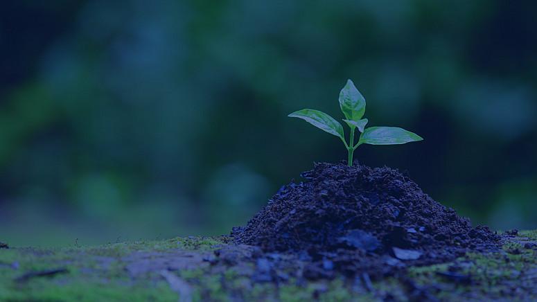 Logística reversa da FFM resultou em 129 Kg a menos de CO2 no meio ambiente