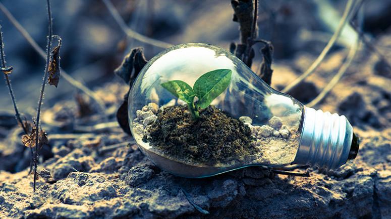 A relação direta entre as práticas corporativas e as boas posturas com o Meio Ambiente